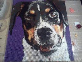 perler / hama beads Dog by Kirikina