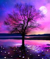 A Sky Full of Stars by k-i-mm-i-e