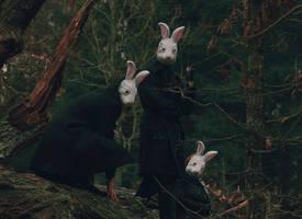 rabbits by perhydrol