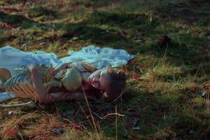 dream. by perhydrol