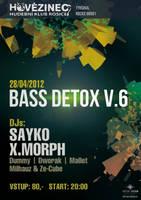 Bass Detox V.6 at Hovezinec - flyer by weronicamc