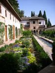 Granada Alhambra 2008 VI