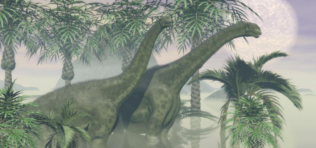 Cetiosaurus by TeddyBlackBear2040