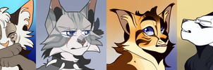 {c} icons by seabeasts