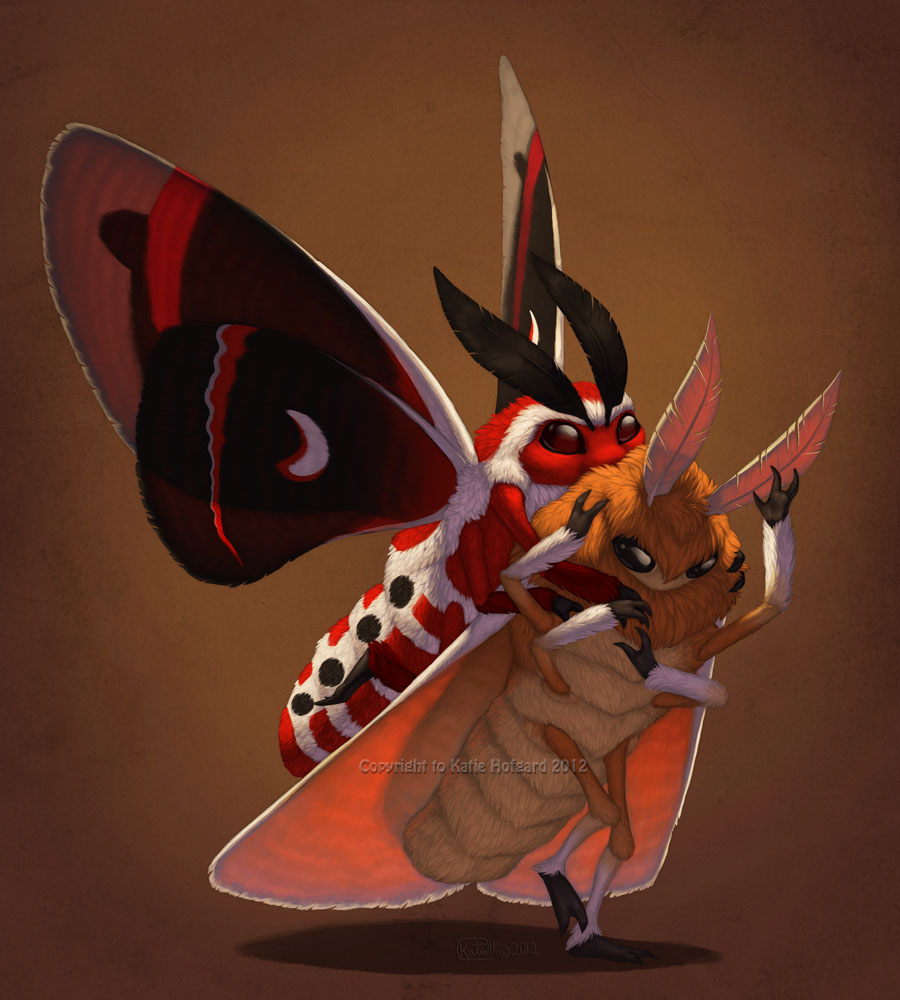 Moth Glomp by KatieHofgard