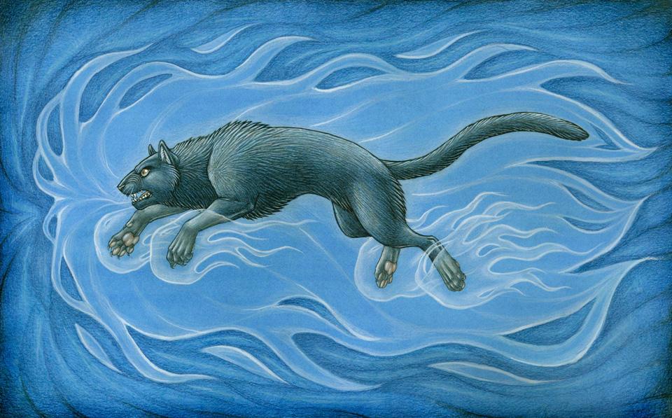 BASTET O CREPÚSCULO (Edição Revisada) Ghost_Cat_by_shadow_wolf