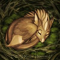 Moss Nest
