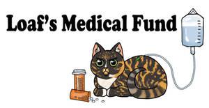 Loaf's Medical Fund