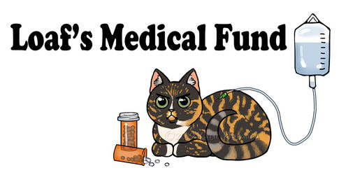 Loaf's Medical Fund by KatieHofgard