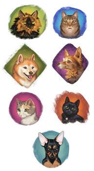 Kitten Donation Doodles!