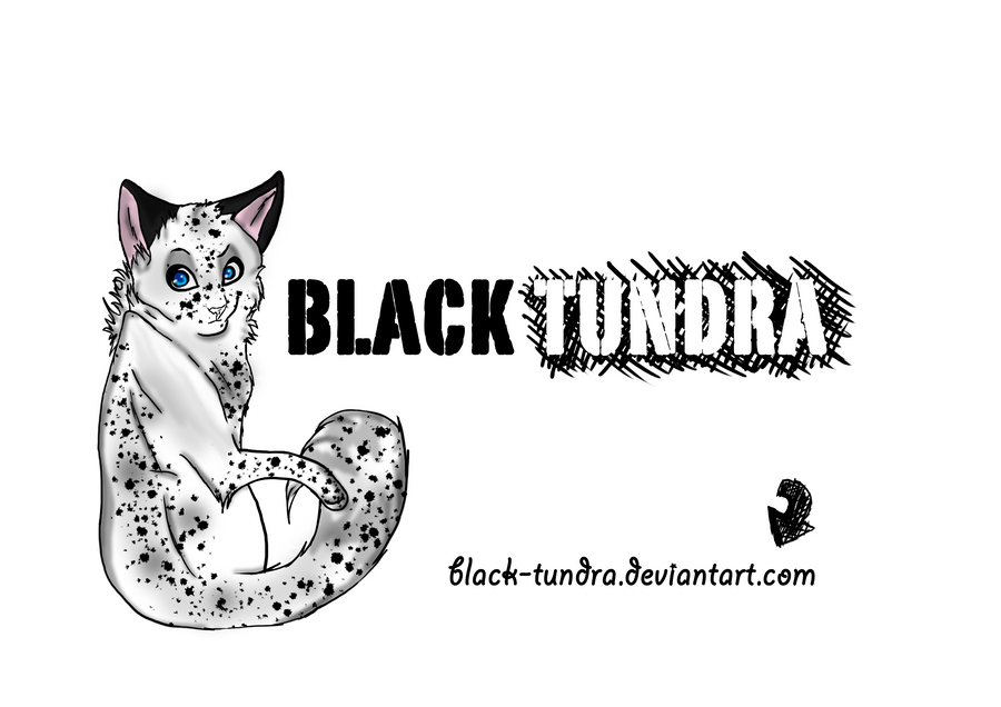 Black-Tundra's Profile Picture