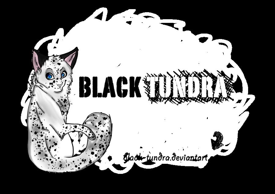 Black-Tundra's Profile Picture