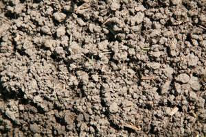 soil texture 02 by arkaydo