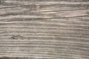 wood texture 03 by arkaydo