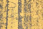 yellow concrete 04