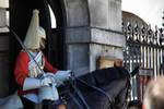 Household Cavalry II HDR