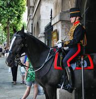 Royal Horse Artillery III