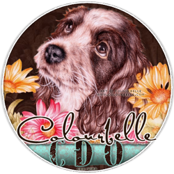 CDO Artist Of The Month April is Colourbelle!