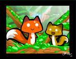Fox mushrooms