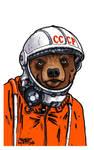Misha, Cosmonaut Bear