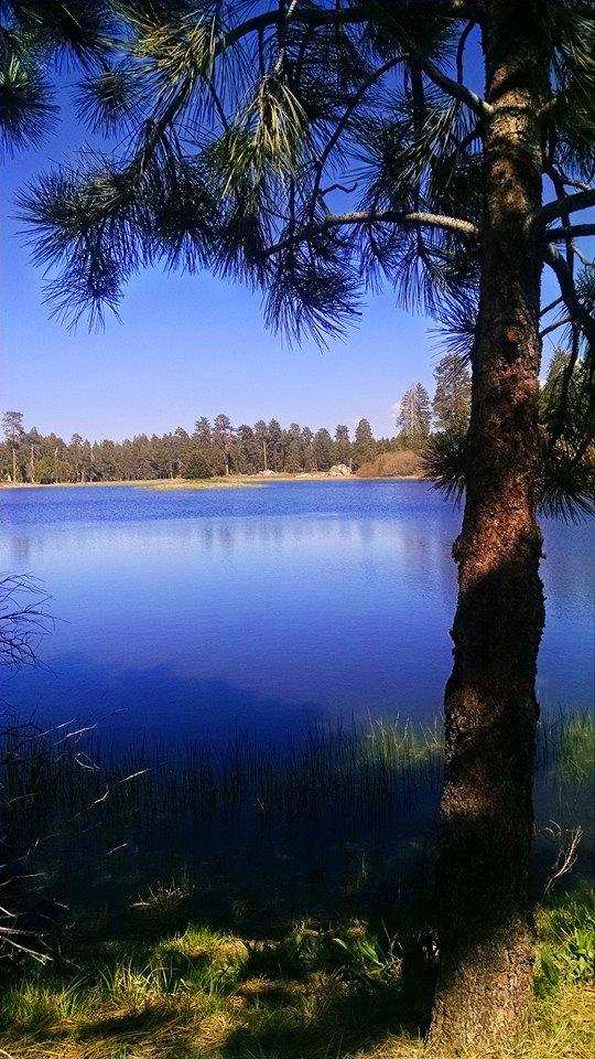 Bluff Lake by AliceN101