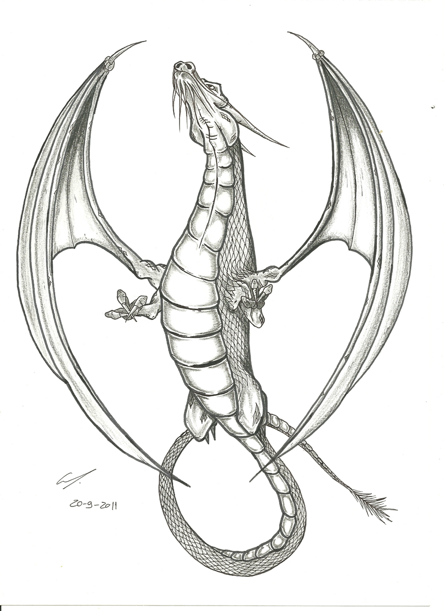 Tattoo Flash Line Drawing Converter : Dragon tattoo flash by edgarvalerio on deviantart