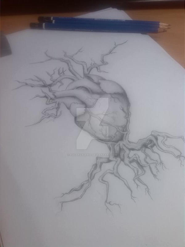 heart with roots by EdgarValerio