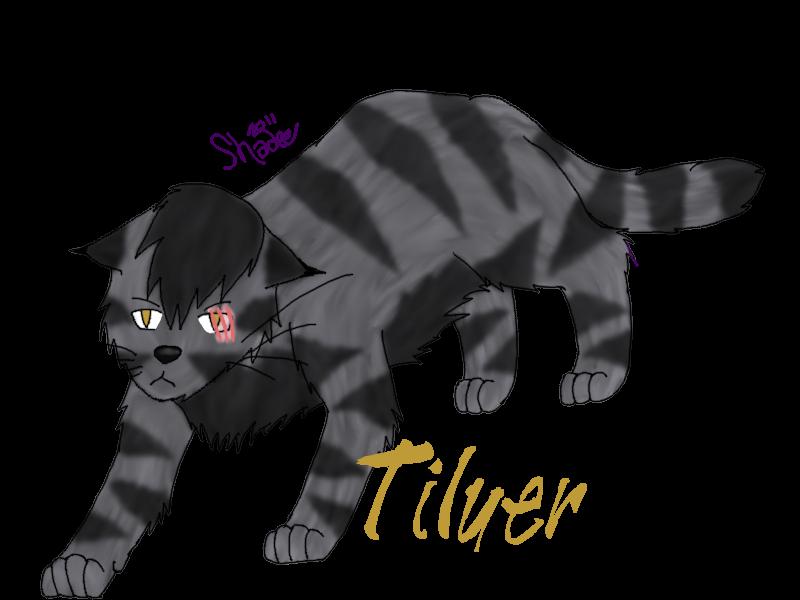 Tilyer the Lynx by Shadetiger