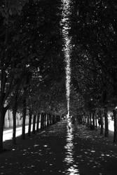Walking In The Sun by hosagu
