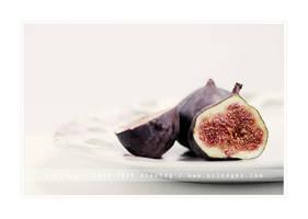 Figs. 01 by AlexEdg