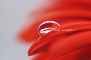 droplet 07 by AlexEdg