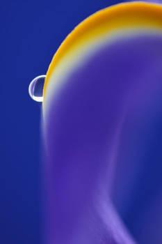 droplet 013