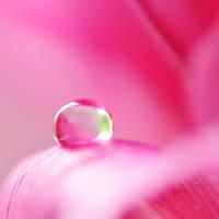 droplet 015