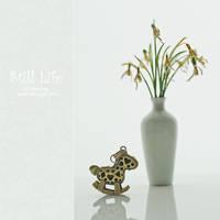 Still Life. 0105 by AlexEdg