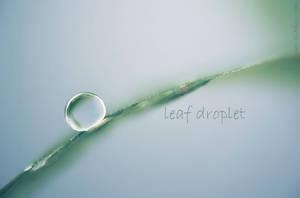 droplet. 020