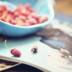 wild strawberry by AlexEdg