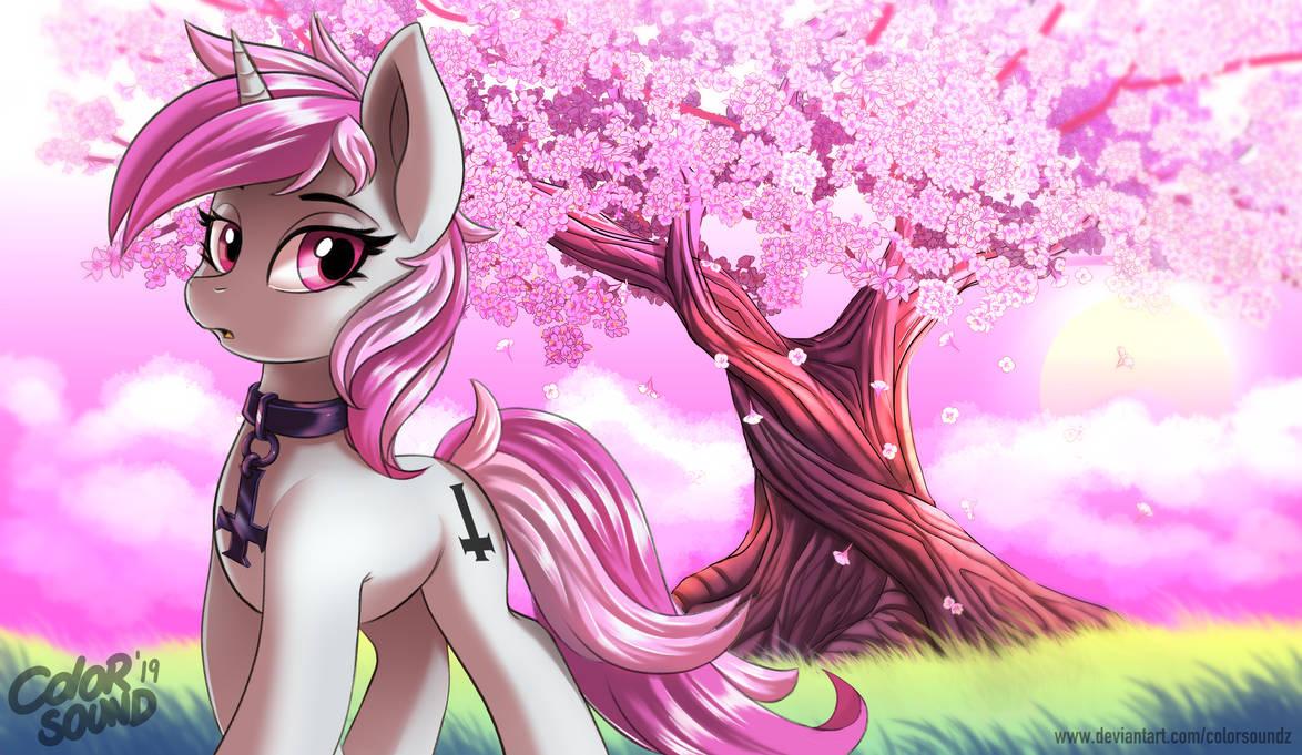 blossom_by_colorsoundz_dd1ulk0-pre.jpg?t