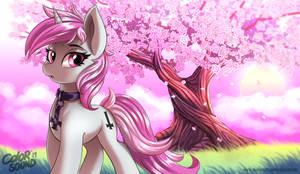 Blossom by ColorSoundz