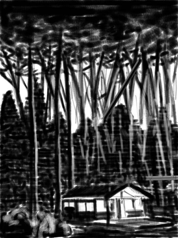 Maison dans les bois by olim2004