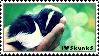 I love skunks. by Valotoxin