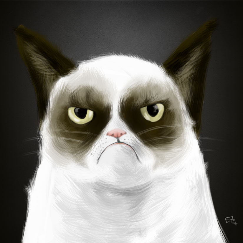 Grumpy Cat by elguapo6
