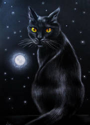 Moon Cat by evlena