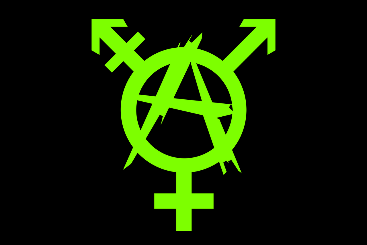 Anarchy trans pride by itzcitlalli on deviantart bright green anarchy trans pride by itzcitlalli buycottarizona Gallery