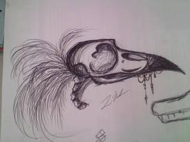 Raven skull doodle
