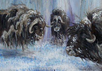 Musk Oxen on Wood by ribbittyrabbitty