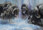 Musk Oxen on Wood