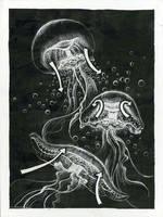 Jellyfish by ribbittyrabbitty