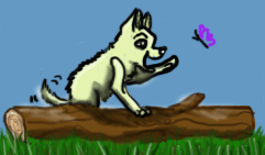 dog on a log by otherside-of-someday