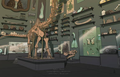 Cluttered Museum