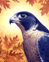 Falcon by Alanpaints